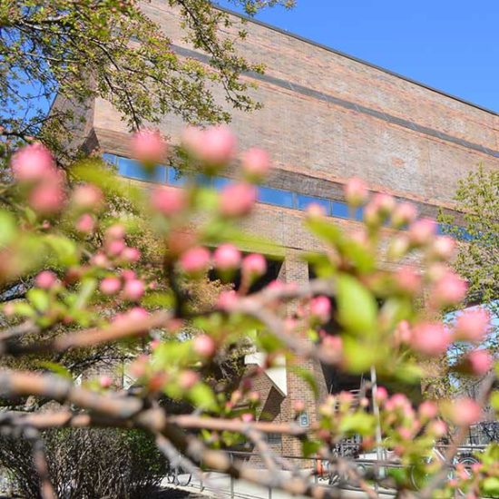 The UIC College of Education building on UIC's campus, shown on a spring day with flowering trees in the foreground of the image.
